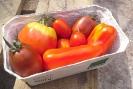 Tomaten-Spezimix