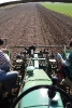 Kartoffeln legen (3)
